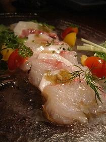 真鯛とカブのカルパッチョ ナンプラードレッシング.jpg