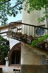 グリーンハウス螺旋階段.jpg