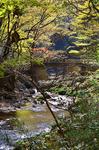 比婆道後帝釈国定公園帝釈峡 上帝釈.jpg