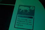 音の出るベンチ オービィ横浜 MARK IS.jpg