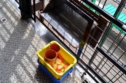 ジャングルバスエサ リンゴ生肉 サファリエリア 富士サファリパーク.jpg