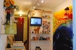 9月 野田智之 リサイクル・アートライブin黄金町 黄金町バザール2011.jpg